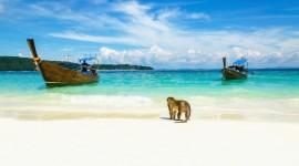 SALIDA GRUPAL DUBAI & TAILANDIA 2018