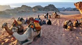 Jordania con Petra, Wadi Rum y Mar Muerto con Dubai - 14 Marzo