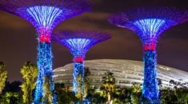 SALIDA GRUPAL MALASIA, SINGAPUR & BALI 2018