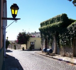Colonia Seacat - Feriados