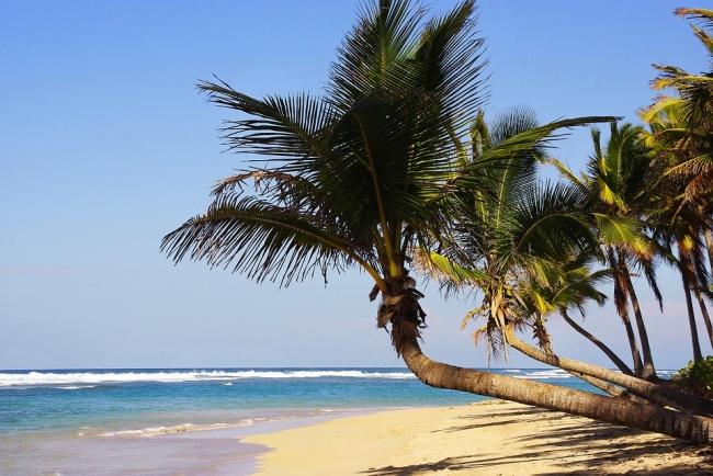 Perlas del Caribe & Punta Cana