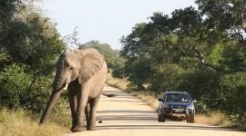 Con auto - Clásica Sudáfrica