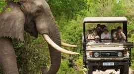 Explorando Sudáfrica