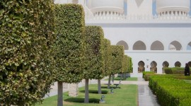 DUBAI & ABU DHABI CULTURA Y MODERNIDAD