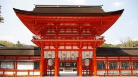 TENTACIONES DE JAPON